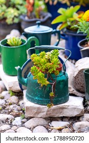 Reused planter ideas. Second-hand kettles, saucepans, old teapots turn into garden flower pots. Recycled garden design and low-waste lifestyle.