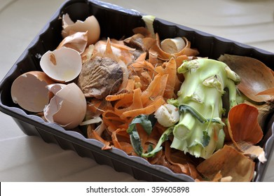 Re-used plastic container of vegetable food waste from the kitchen for home recycling by composting.