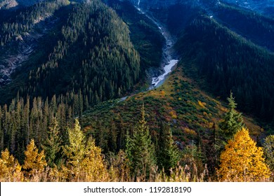 Revelstoke National Park Canada