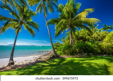 Rex Smeal Park in Port Douglas with tropical palm trees and beach, Australia