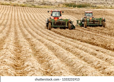 Rexburg, Idaho, USA Sep, 24, 2012- Farmers use farm machinery in the fields of Idaho harvesting potatoes.  The potatoes are dug and gently placed in a truck to be moved to a cellar for winter storage.