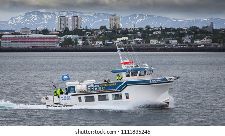 Reykjavik, Iceland - June 12, 2018 : Whale watching boat Rósin entering port in Reykjavik with passengers.