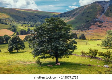Rhaeadr Valley at bright summer day in Snowdonia National Park, UK
