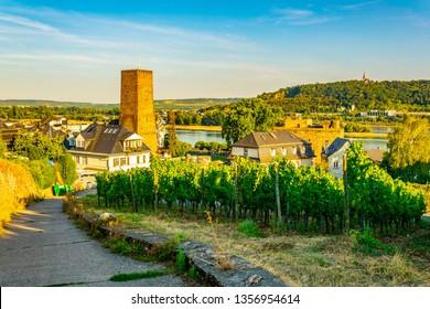 Rheingauer wine museum in Rudesheim am Rhein in Germany