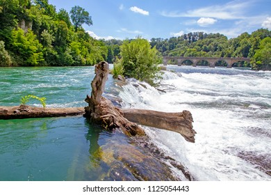 Rhine Falls in Switzerland