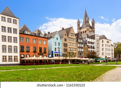 Rhine garden and Cologne Cathedral in summer ,Germany