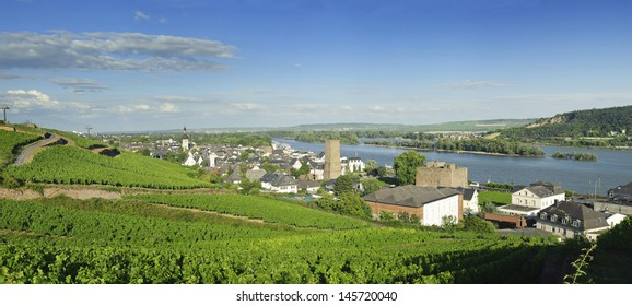 Rhine valley under blue sky majestic view in Rudesheim.