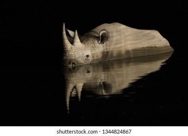Rhino illuminated at a water hole in Namibia.