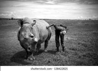 Rhino Keeper