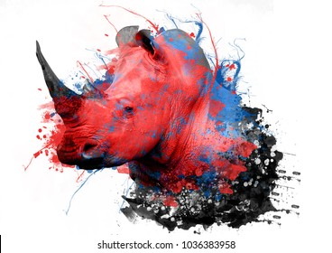 rhinoceros with abstract paint on white background