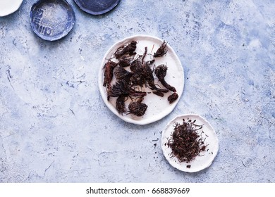 Rhodiola cold rhodiola chetyrehchastnaja medical use plant root flower phytotherapy