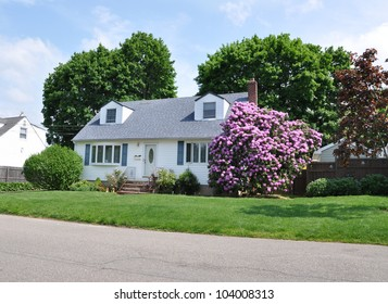 Rhododendron Flowers Suburban Cape Cod Style Home Residential Neighborhood