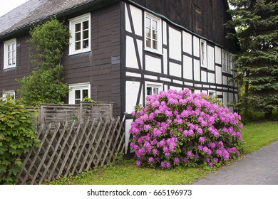 rhododendron in front of half-timbered House, Sauerland, Germany