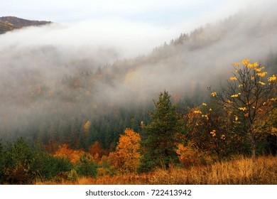 Rhodope Mountains, Bulgaria, Autumn Fog Landscape.