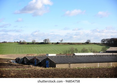 Rhubarb Triangle Farm and Agricultural buildings near Wakefield West Yorkshire UK