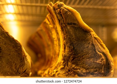Rib of beef in the freezer.