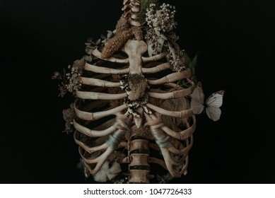 Rib Cage with Dried Flowers