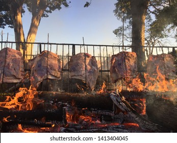 Rib on the ground fire, in a park, tradition mainly of the south of Brazil, rib of bovine, cut of the ox that has greater variety of flavors, the brazier is made with firewood and wood branches.