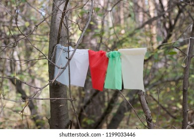 ribbons on a rope in the forest, bright colorful, competitions, fees, hiking
