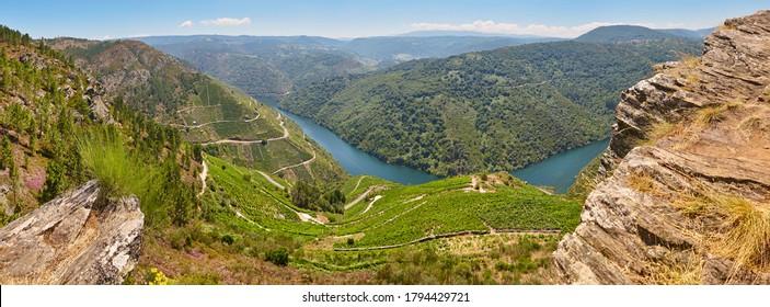 Ribeira sacra terrace vineyards panoramic view in Galicia, Spain