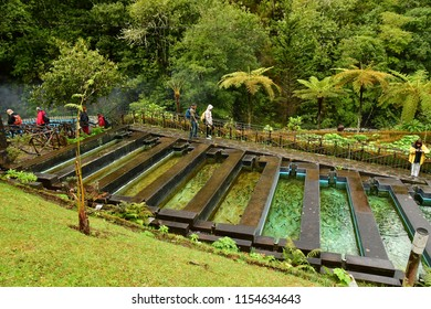 Ribeiro Friol, Madeira, Portugal - february 23 2018 : a trout farming