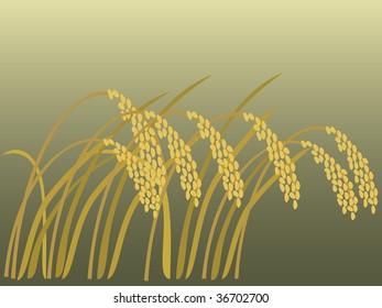 rice in autumn illustration