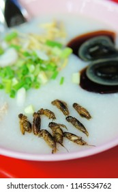 Rice Congee Asian Soup topped with chives, eggs, and crickets