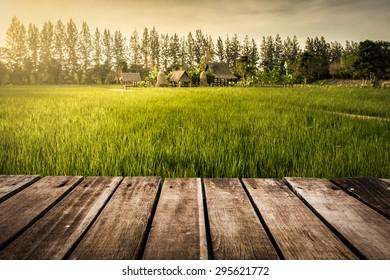 rice farm and wooden platform sunset