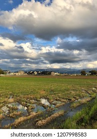 Rice field in the fall, Japanese village -landscape