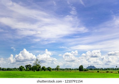 Rice field green grass with blue sky and clouds in countryside Thailand.