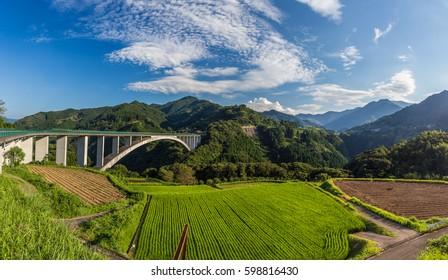 rice field landscape and arch bridge in Takachiho, Miyazaki, Japan
