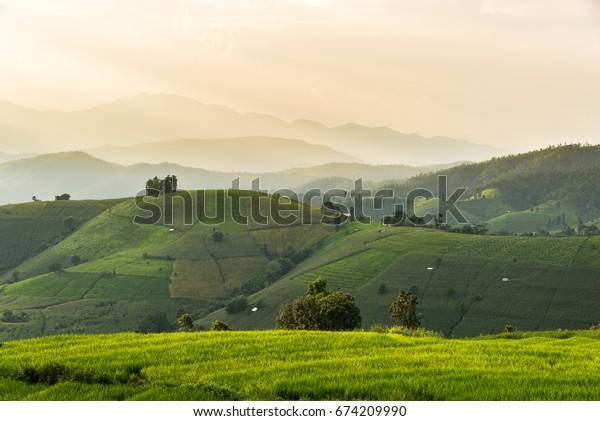 Rice field and Mountain ,Locate on Baan pa bong piang ,Chaing mai province ,Thailand