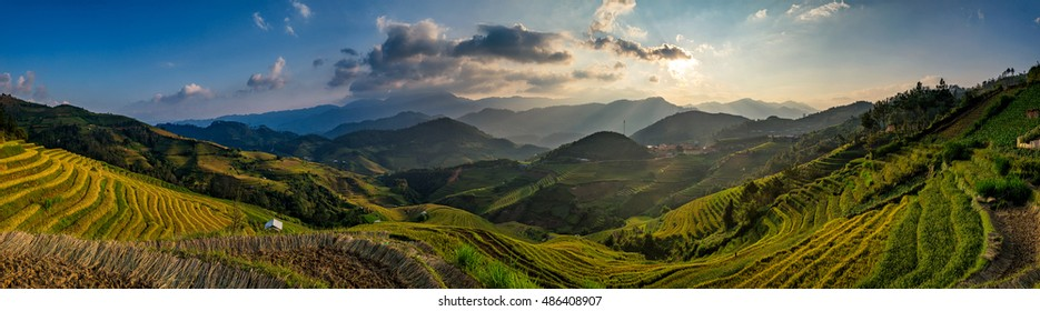 Rice field on Terraces panoramic hillside with rice farming on mountains beautiful shape in nature. It named in top ten world's most beautiful landscapes in Lapantan, Mu Cang Chai,  Yen Bai, Vietnam