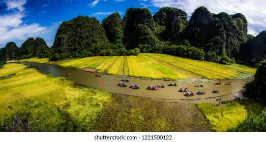 Rice field in Tam Coc - Bich Dong, Ninh Binh Province, Vietnam; June 11, 2018