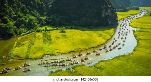 Rice field in Tam Coc - Bich Dong, Ninh Binh Province, Vietnam 18.05.2019