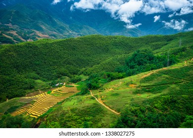 rice field terrace in the mountain