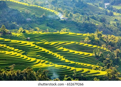 Rice fields on terraced of Hoang Su Phi, Ha Giang, Vietnam. Vietnam landscapes.