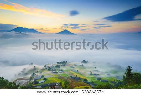 Rice fields on terraced of Hoang Su Phi, Ha Giang, Vietnam. Rice fields prepare the harvest in the cloud at Northwest Vietnam