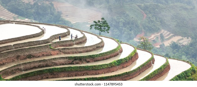 Rice fields on terraced. Fields are prepared for planting rice. Huyen Hoang Su Phi. Ten Sao Phin, Northen Vietnam