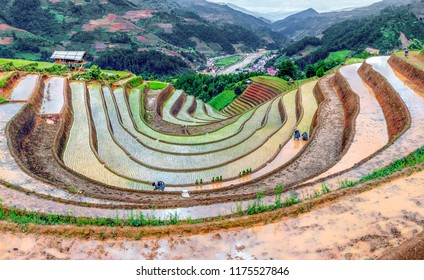 Rice fields on terraced. Fields are prepared for planting rice. Huyen Mu Chang Chai. Northen Vietnam
