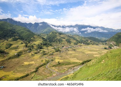 Rice fields on terraced of Sapa, Sapa District, Lao Cai Province, Northwest Vietnam