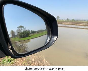 Rice fields in rear mirror