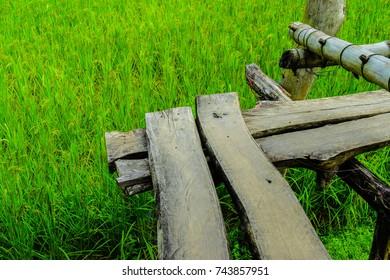 rice filed bridge