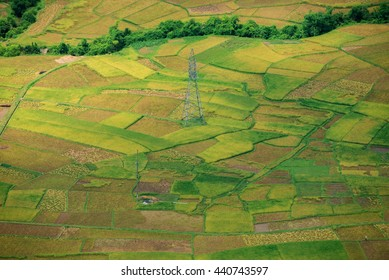 Rice paddies and MaiChau Valley - Hoa Binh province, Vietnam in the season of harvest on June 18,2016. Maichau is beautiful valley in the northwest of vietnam which provide great food for northwestern