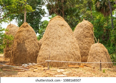 Rice straw is part of remaining after harvesting, the rice is useful in many ways and used as an essential raw material for the production of other agricultural.