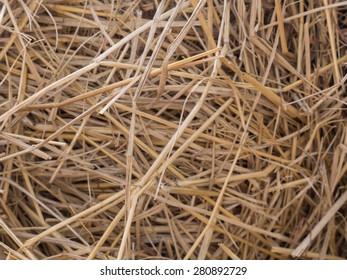 rice straw texture