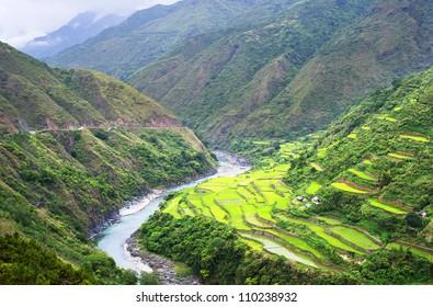 Rice terrace in Cordillera mountains, Luzon, Philippines