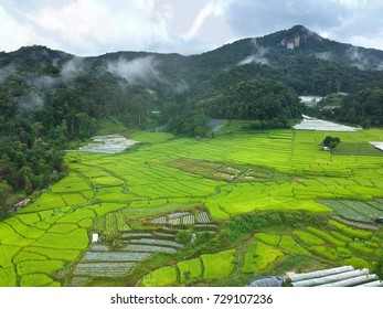 Rice terrace at Doi Inthanon National Park in Chom Thong District  Chiang Mai Province, Thailand