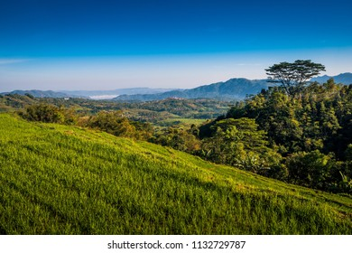 A rice terrace farm overlooking the town of Ruteng on a beautiful sunny day
