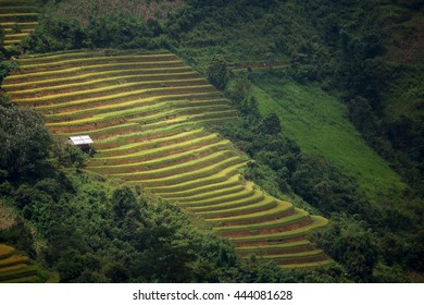 The rice terrace farmâ??s landscape with rural scene and the beautiful sky and surroundings